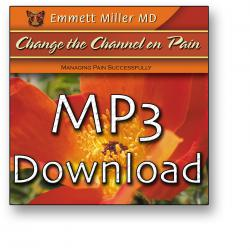 Change The Channel On Pain (MP3 Download)